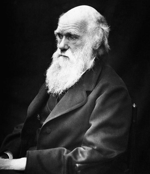 Charles Darwin, britský prírodovedec (19.storočie).